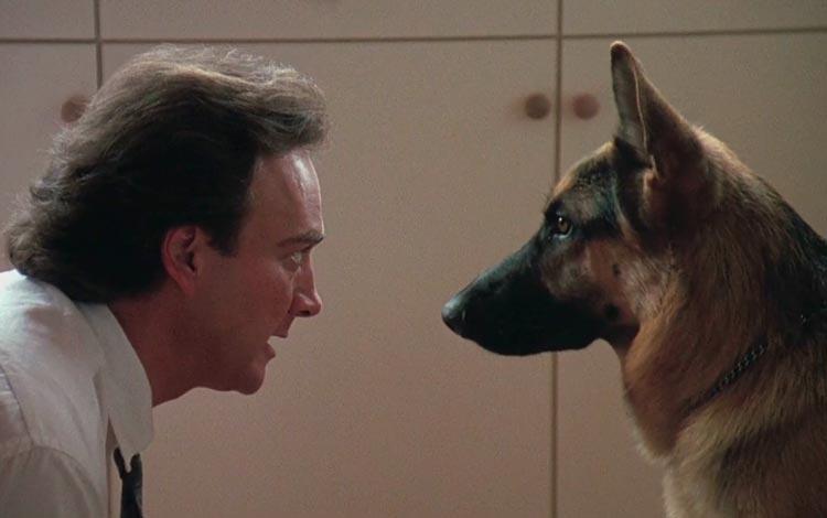 CineDog: K9 – Um policial bom pra cachorro