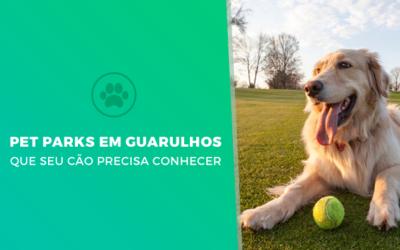Pet Parks que seu cão precisa conhecer